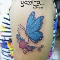 Colour Butterfly with Flowers